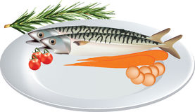 Plate of vegetables mackerel fish. Catering platter of blue mackerel fish vegetables Stock Image