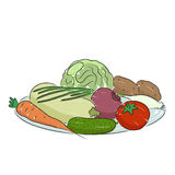 A plate of vegetables, vector illustration. A plate of vegetables isolated on a white background. Hand drawn with brush vector illustration for design of shop Stock Image
