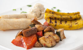 Plate of vegetarian food royalty free stock images