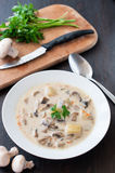 Plate of vegetarian mushroom soup Royalty Free Stock Image