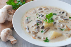 Plate of vegetarian mushroom soup Royalty Free Stock Photography