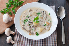 Plate of vegetarian mushroom soup Stock Images