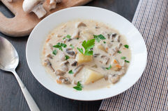 Plate of vegetarian mushroom soup Royalty Free Stock Photos