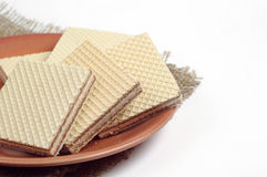 Plate with wafers Stock Images