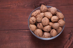 Plate with walnuts Stock Image
