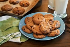 Plate of warm chocolate chip cookies and glass of milk. Plateful of chocolate chip cookies fresh and warm out of the oven with cold glass of milk on rustic wood Stock Images