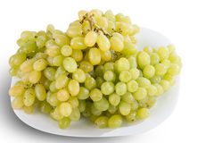 Plate of white grapes Stock Images