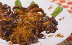 Plate With Grilled Octopus Dish Stock Photos