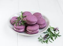 Free Plate With Lavender Macarons Stock Photos - 121914603