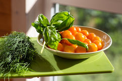A plate of yellow tomatoes, dill and Basil Royalty Free Stock Image