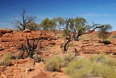 Plateau élevé des Rois Canyon Photos stock