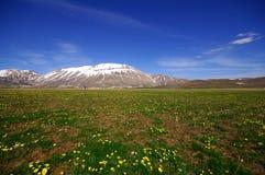 Plateau Stock Images