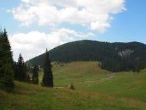 Plateau alpin en couleurs vives et ciel bleu Photo libre de droits