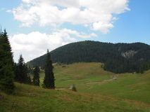 Plateau alpino in colori vivi e cielo blu Fotografia Stock Libera da Diritti