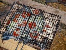 Plateau appétissant des poissons différents d'espèces Photos libres de droits