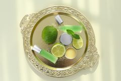 Plateau avec des parfums, des chaux et des feuilles en bon état Photo stock