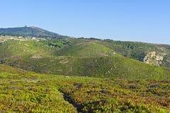 Plateau côtier images libres de droits