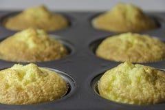 Plateau de cuisson de petits gâteaux Photographie stock libre de droits
