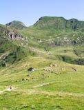 Plateau de montagne Images libres de droits