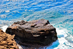 Plateau de roche en mer Photo libre de droits