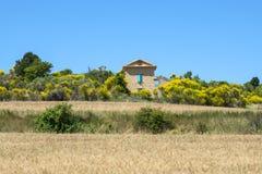 Plateau de Valensole (Provence), house. Plateau de Valensole (Alpes-de-Haute-Provence, Provence-Alpes-Cote d'Azur, France(, country house and brooms Stock Image