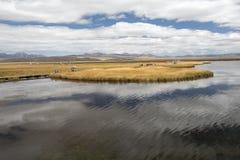 Plateau del lago flower Fotografia Stock Libera da Diritti