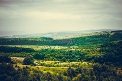 Plateau del paesaggio Foresta nella valle immagini stock libere da diritti