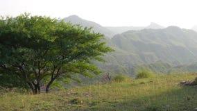 Plateau della montagna Immagine Stock