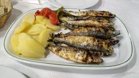 Plateau des sardines grillées fraîches avec des pommes de terre et des poivrons Plat typique au Portugal photographie stock libre de droits