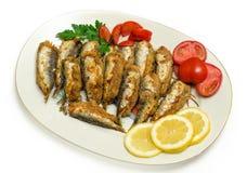 Sardines bourrées Photographie stock libre de droits