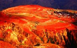 Plateau di colore rosso della provincia di Yunnan Immagine Stock Libera da Diritti