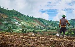Plateau di Dieng Immagine Stock Libera da Diritti
