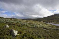 Plateau di Hardangervidda Immagini Stock