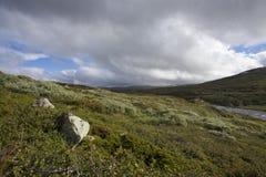 Plateau di Hardangervidda Fotografia Stock