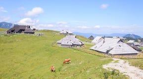 Plateau di planina di Velika, Slovenia, paesino di montagna in alpi, case di legno nello stile tradizionale, escursione popolare Immagine Stock Libera da Diritti