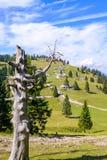 Plateau di planina di Velika, Slovenia, paesino di montagna in alpi, case di legno nello stile tradizionale, escursione popolare Fotografie Stock Libere da Diritti