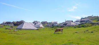 Plateau di planina di Velika, Slovenia, paesino di montagna in alpi, case di legno nello stile tradizionale, escursione popolare Immagini Stock Libere da Diritti