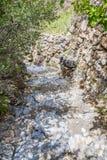 Plateau di Saiq del percorso dell'Oman Immagine Stock Libera da Diritti