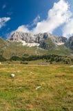 Plateau e Julian Alps di Montasio Immagini Stock Libere da Diritti