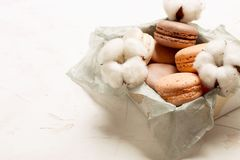 Plateau français traditionnel de biscuits de dessert de macarons de canneberge de chocolat de caramel d'amande sur le fond textur Photos libres de droits
