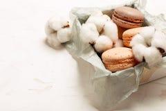 Plateau français traditionnel de biscuits de dessert de macarons de canneberge de chocolat de caramel d'amande sur le fond textur Photo libre de droits
