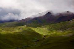 Plateau grassland Stock Image