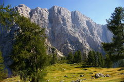 Plateau in Julian alps Royalty Free Stock Images