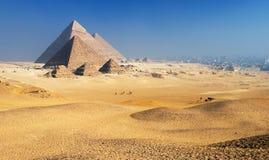 Plateau le Caire de Giza de pyramides Photos libres de droits