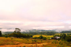 The plateau in the morning. The scenery of a farmhouse on the plateau Royalty Free Stock Photo
