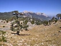 Plateau of Mount Tahtali, Turkey Royalty Free Stock Photo