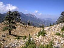 Plateau of Mount Tahtali, Turkey Stock Image