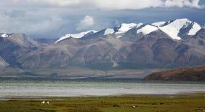 Plateau Mountains,Tibet Stock Photo