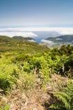 Plateau Paul da Serra in het eiland van Madera Royalty-vrije Stock Afbeelding