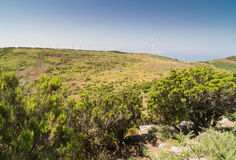 Plateau Paul da Serra in Madera Royalty-vrije Stock Foto